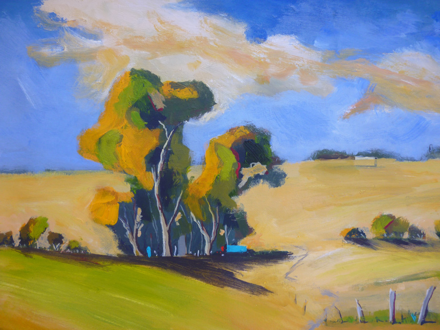 Boorowa Pasture 2 - Click Image to Close
