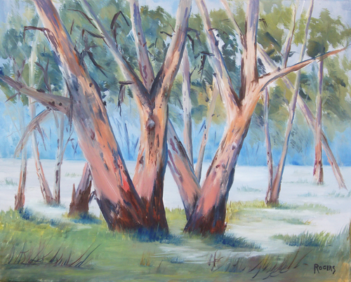 Majestic Murray Gums