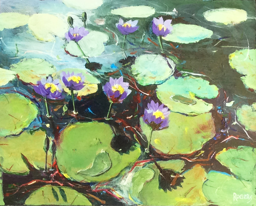 Parry's Lagoon No 2 - waterlilies